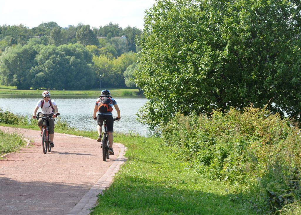 Скучать не придется: летом — велодорожки, зимой — лыжная трасса