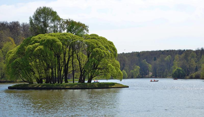 Конкурс на лучший пейзаж объявили в «Царицыне»