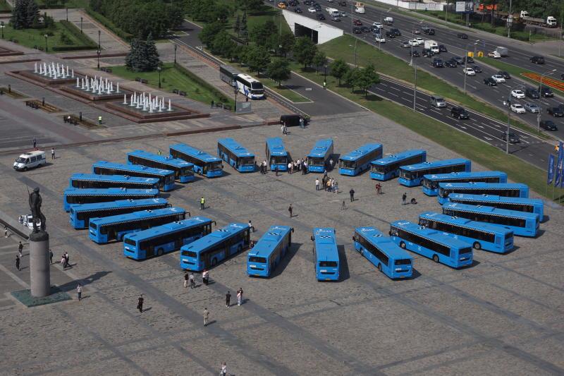 Бесплатные автобусы перевезли более 300 тысяч болельщиков ЧМ — 2018