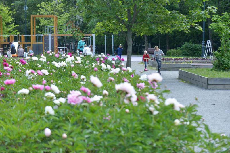 Москвичи смогут бесплатно проверить здоровье в 10 городских парках. Фото: Наталья Феоктистова, «Вечерняя Москва»