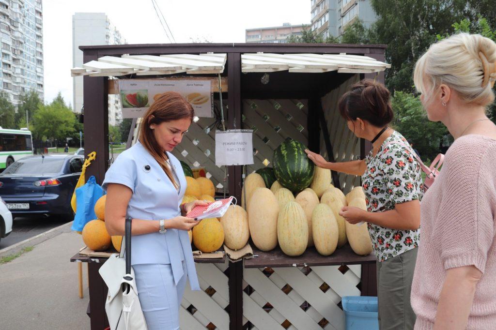 Депутаты Орехова-Борисова Южного проверили бахчевые развалы на соблюдение санитарных норм