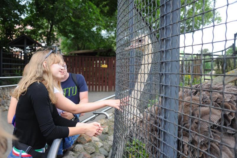 Аудиогиды расскажут о жизни обитателей Московского зоопарка