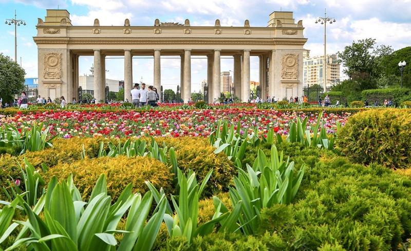 Посетителей ожидает интересная культурная программа. Фото: сайт мэра Москвы