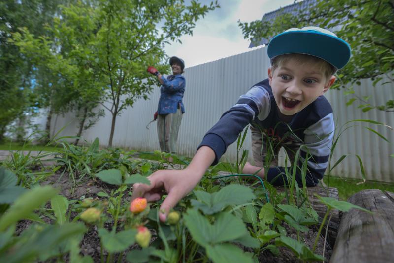 Переход на растительную пищу поможет сократить потребление воды на 55 процентов