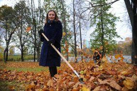 В ходе голосования участники могут оставить свое мнение, стоит ли убирать опавшую листву во дворах. Фото: Светлана Колоскова