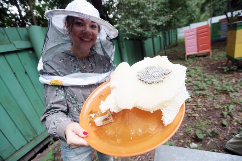 Всемирный день охраны пчел отметят в Битцевском лесу