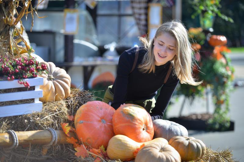 Золотая осень: на Ореховом бульваре научат печь курники и играть в тыквенные шашки