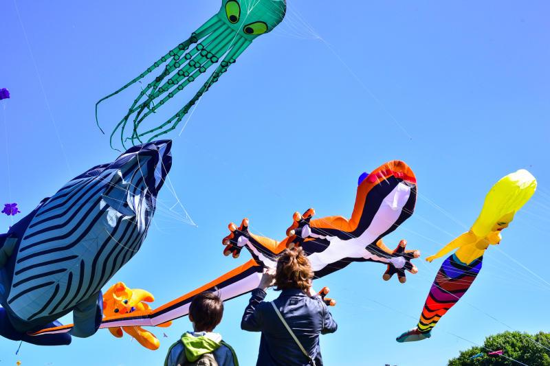 Рептилии в московском небе: фестиваль воздушных змеев прошел в парке Царицыно