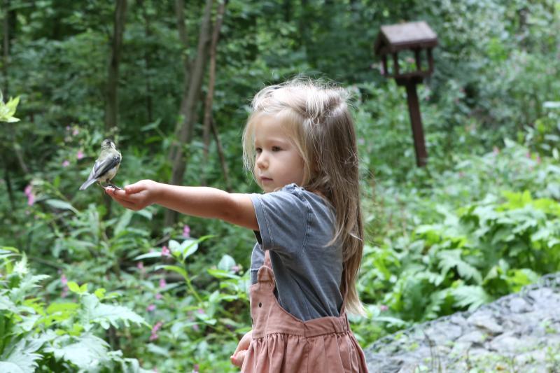 Горожане выберут тему для детского экологического фестиваля в Битцевском парке