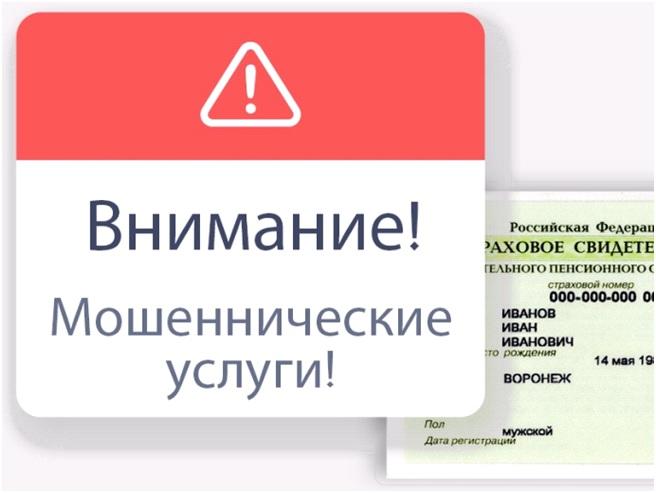 Пенсионный фонд предупреждает о мошеннических услугах по оформлению СНИЛС
