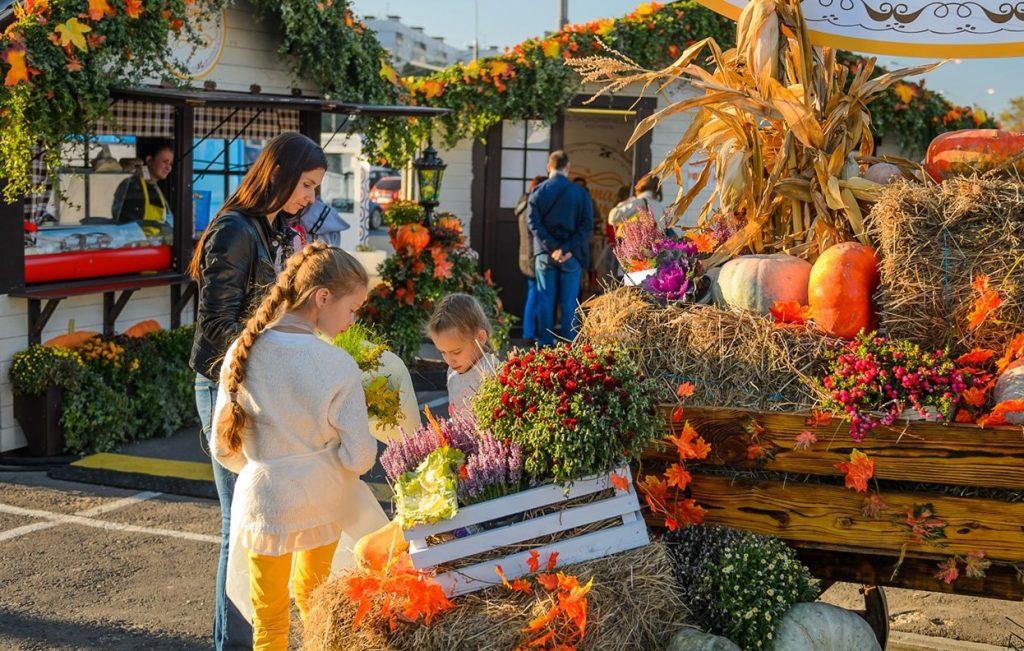 Сто тонн тыкв и десять тысяч живых цветов: фестиваль «Золотая осень» оценят активные граждане
