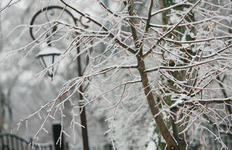 Зима придет в Москву в конце ноября