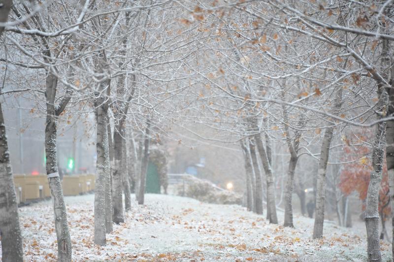 Первый снег: какую работу провели сотрудники жилищно-коммунальных служб района Чертаново Центральное