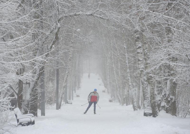 Более 20-ти километров лыжных трасс: где в Южном округе заняться спортом