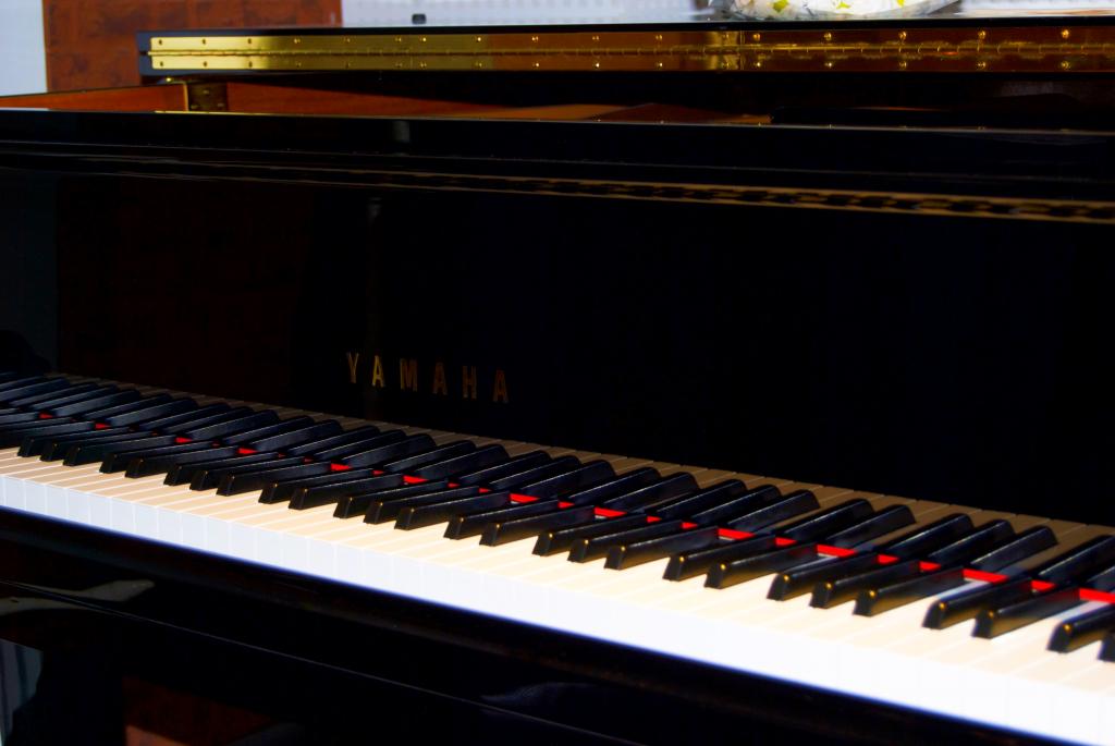Рояль в концертном зале Культурного центра «Дружба». Фото: Никита Нестеров
