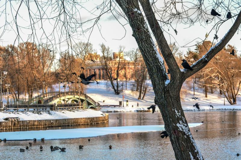 Что покажут юным посетителям детского музея в «Царицыно». Фото: Пелагия Замятина, «Вечерняя Москва»