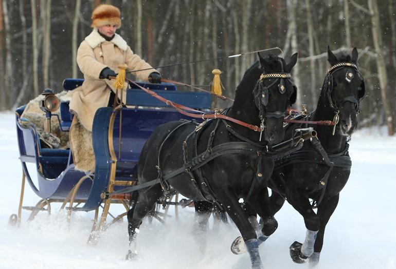 Тюбинговая горка и сани с орловскими рысаками: какие развлечения ждут москвичей в «Царицыно»