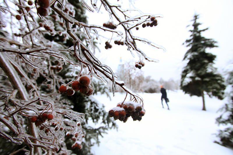 Ледяной дождь обрушится на Москву
