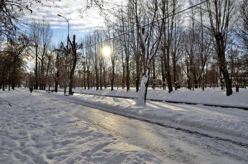 Около тысячи человек поучаствовали в утреннем паркране в столичных парках. Фото: Анна Быкова