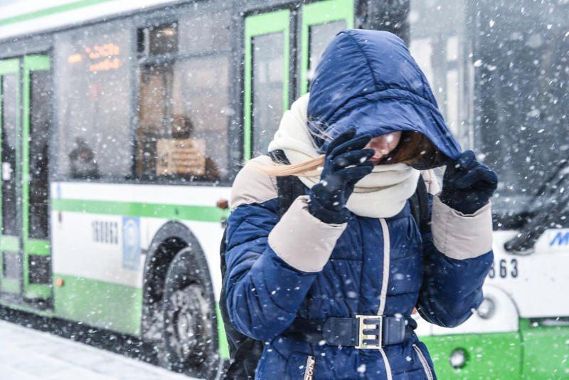 Москва запустила более 400 единиц резервного транспорта из-за непогоды