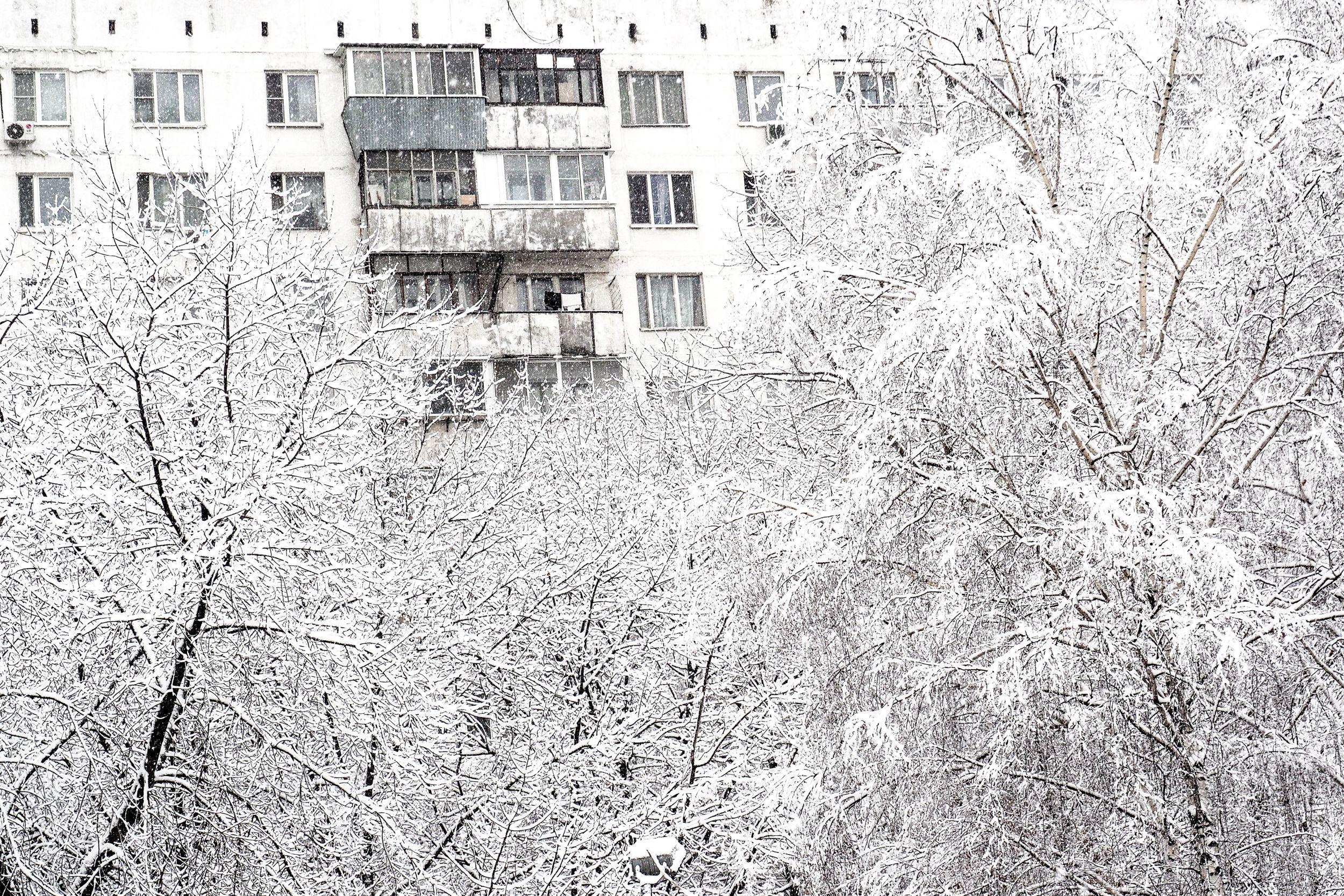 Оттепель задержится в Москве до 18 февраля