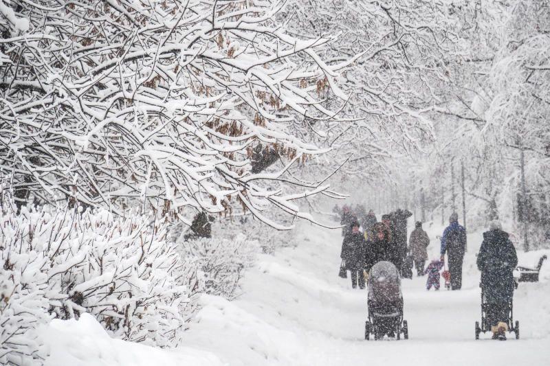 Жители Зябликова захотели парк вместо транспортно-пересадочного узла «Шипиловская»