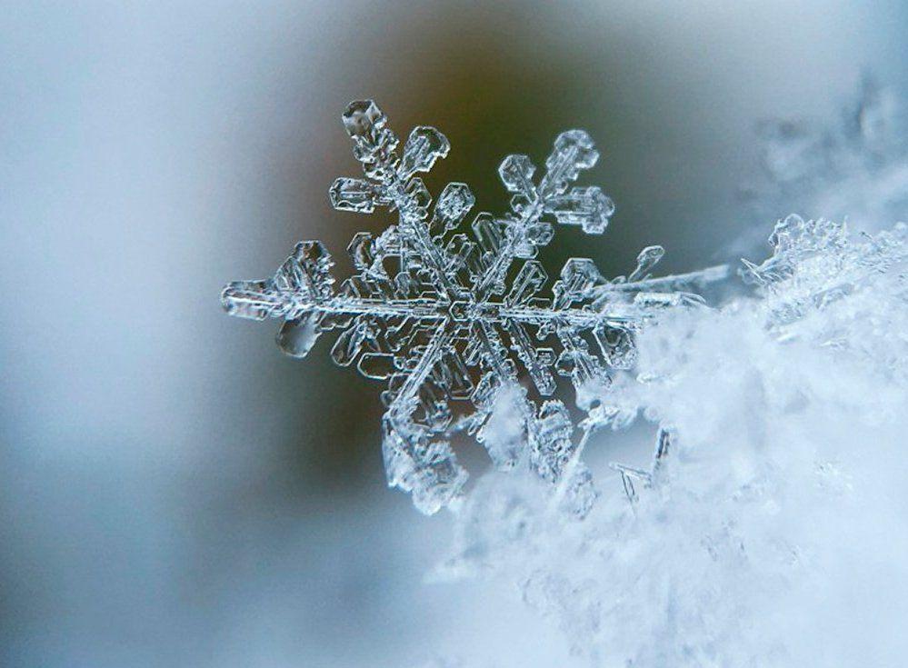 Фотографы покажут собственное видение снега в галерее «Нагорная». Фото: сайт мэра Москвы