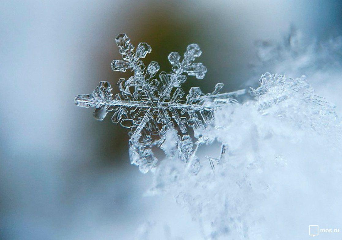 Фотографы покажут разные подходы к съемке снега в галерее «Нагорная»