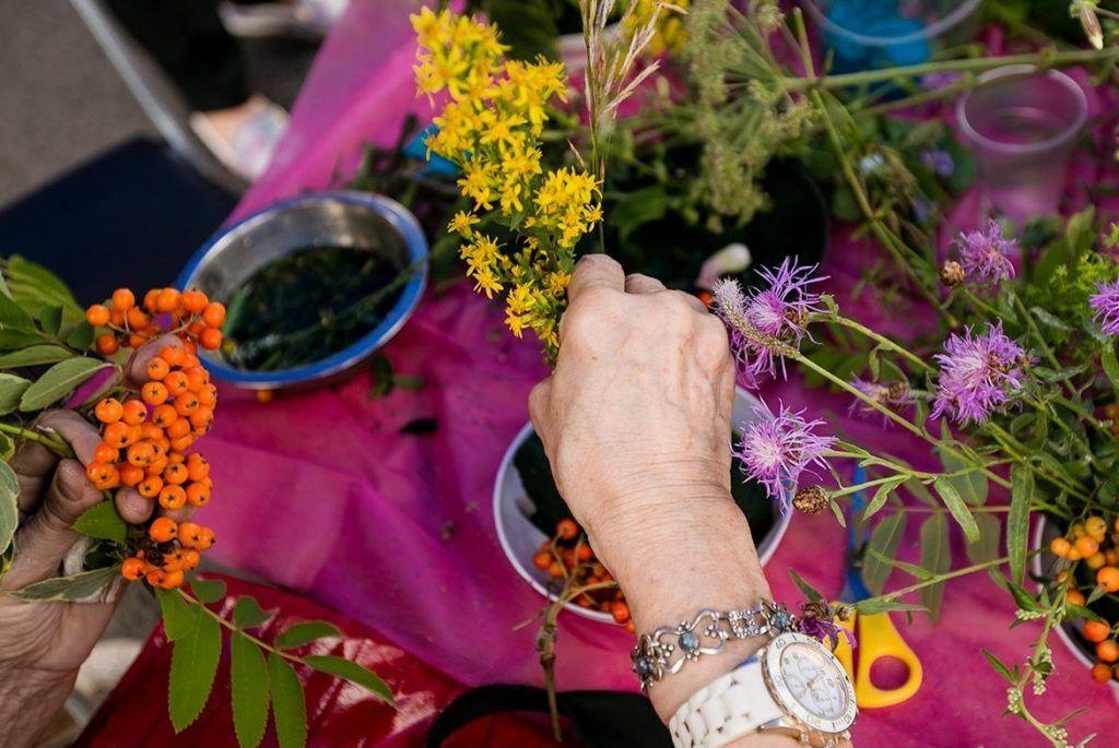 Участников «Московского долголетия» научат садоводству. Фото: сайт мэра Москвы