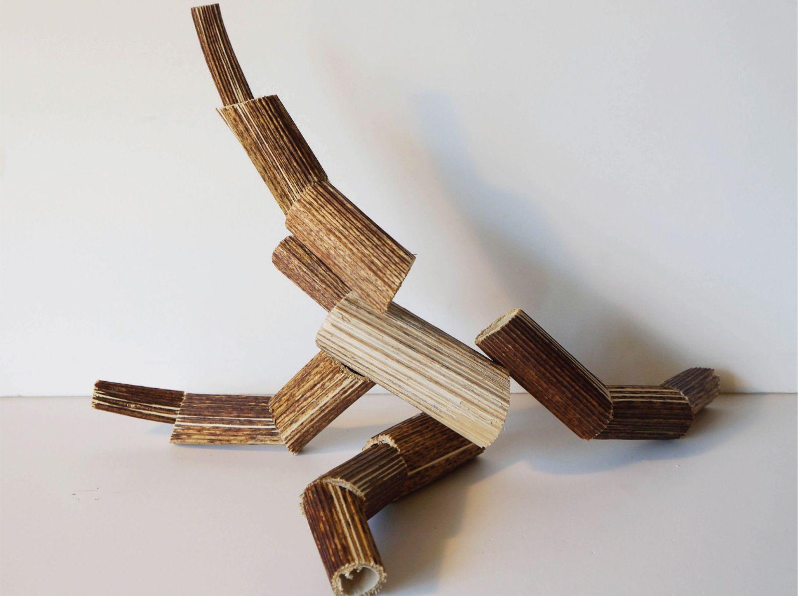 Фабрика Борщевик: в Дарвиновском музее представят выставку в честь опасного сорняка