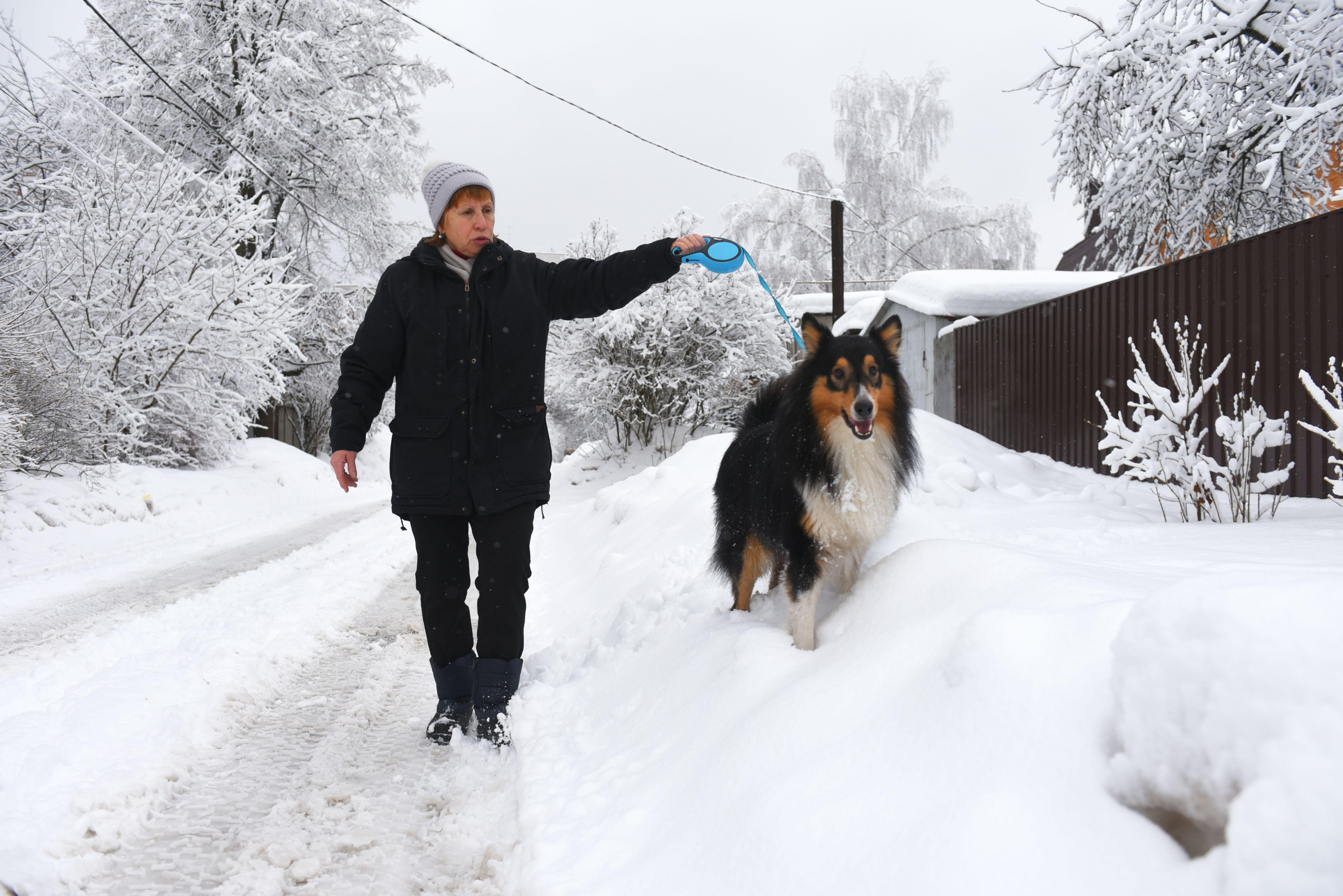 Москвичей ожидают морозные выходные.Фото: «Вечерняя Москва»