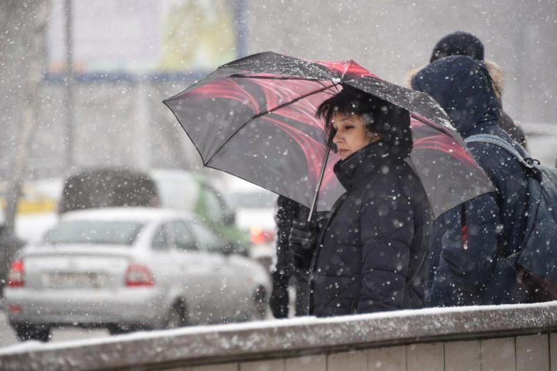 В Москве будет тепло. Фото: Пелагия Замятина
