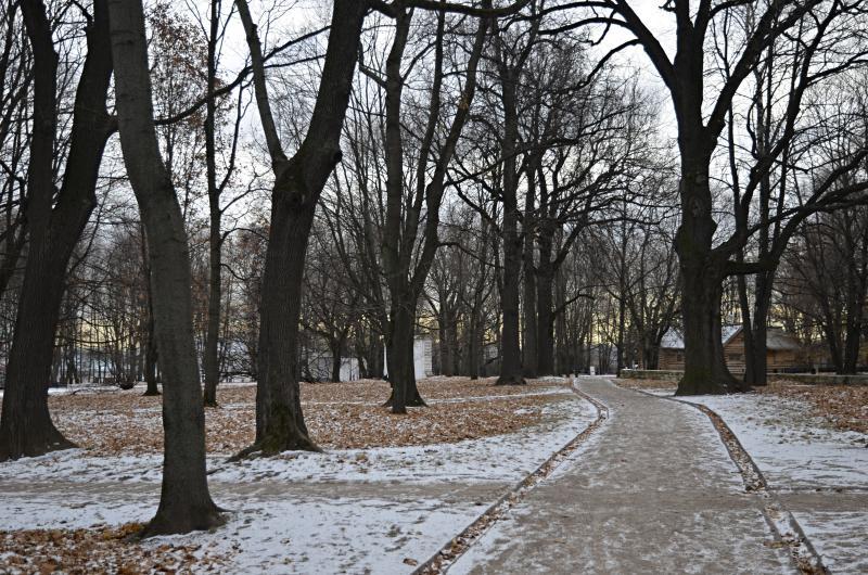 Посетителям парка «Садовники» предложили поучаствовать в фотоконкурсе. Фото: Анна Быкова