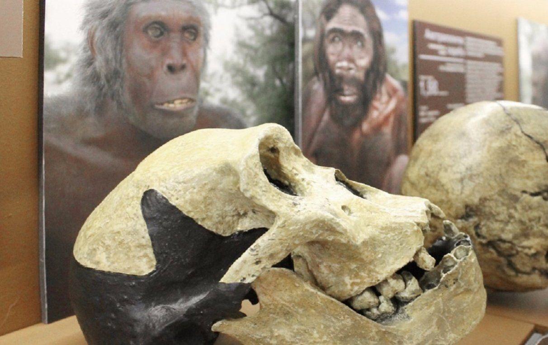 Студентам Национального исследовательского ядерного университета расскажут о древних охотниках