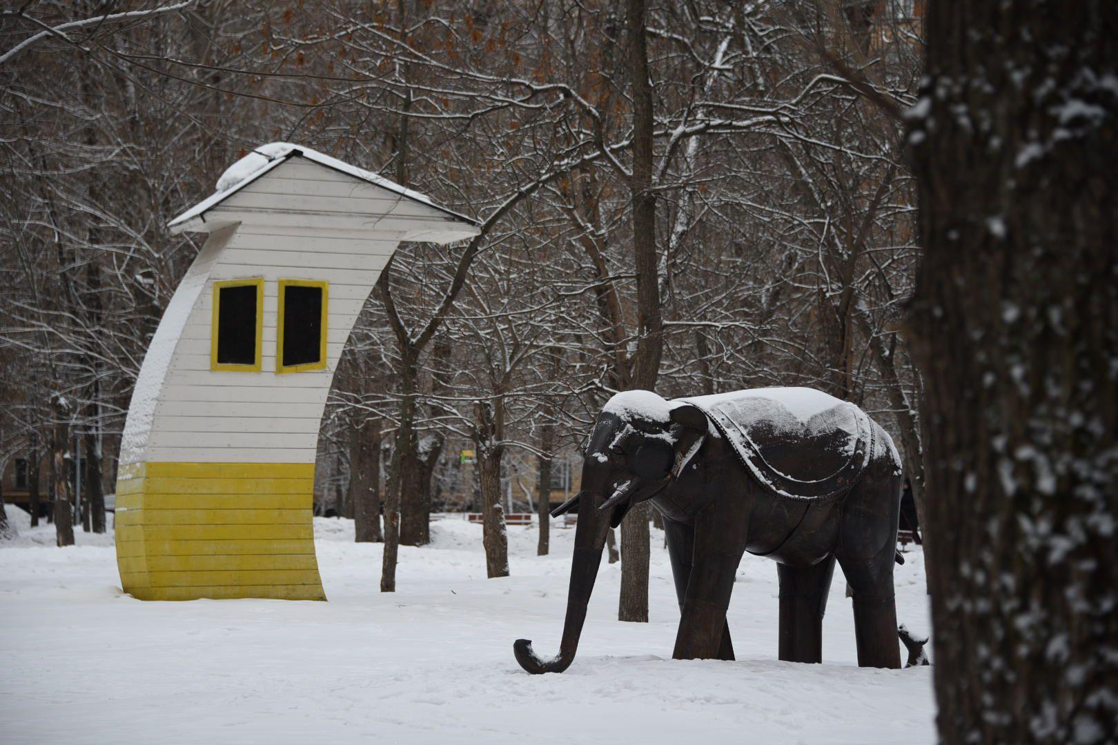 А у нас во дворе поселился слон