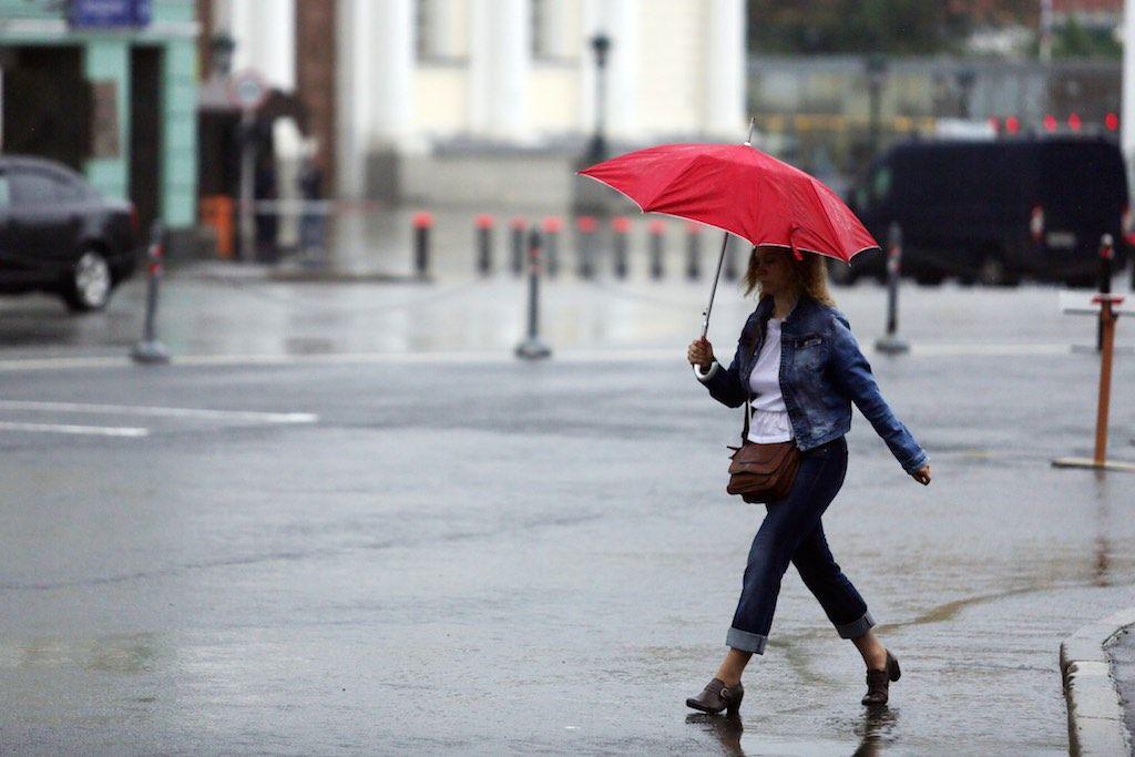 Синоптики Москвы назвали вторник самым жарким днем с начала года