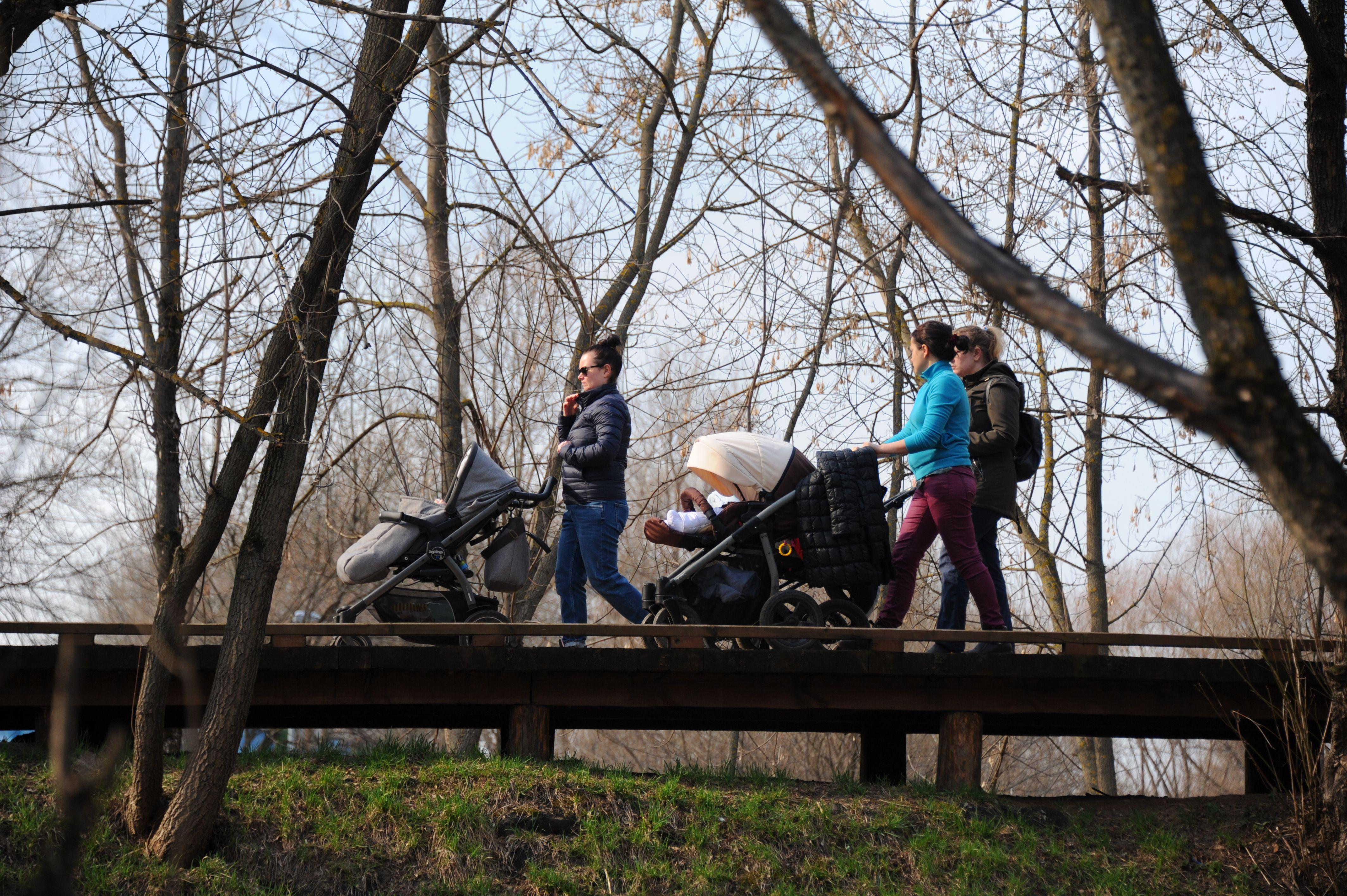 Москва запустит сервис по аренде детских колясок