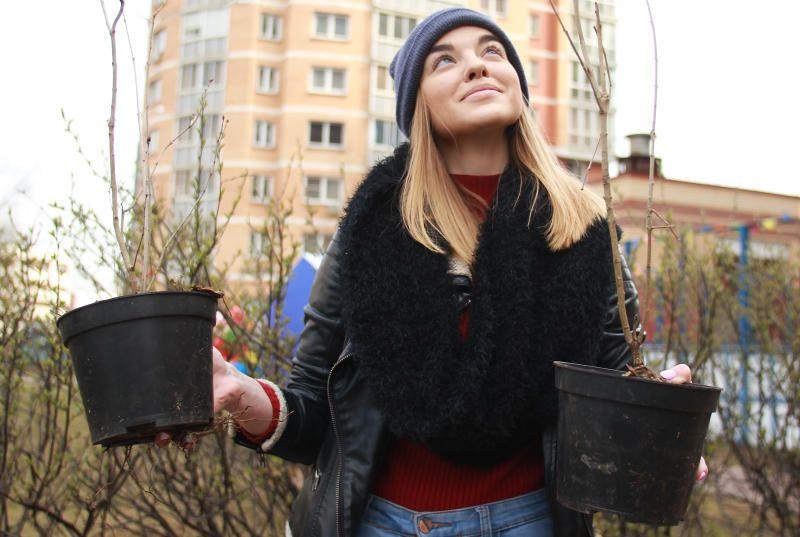 Горожан пригласили принять участие в субботнике на Ореховом бульваре