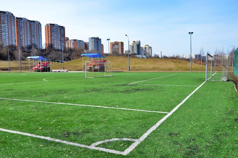 Соревнования по бейсболу проведут в Южном округе. Фото: Анна Быкова