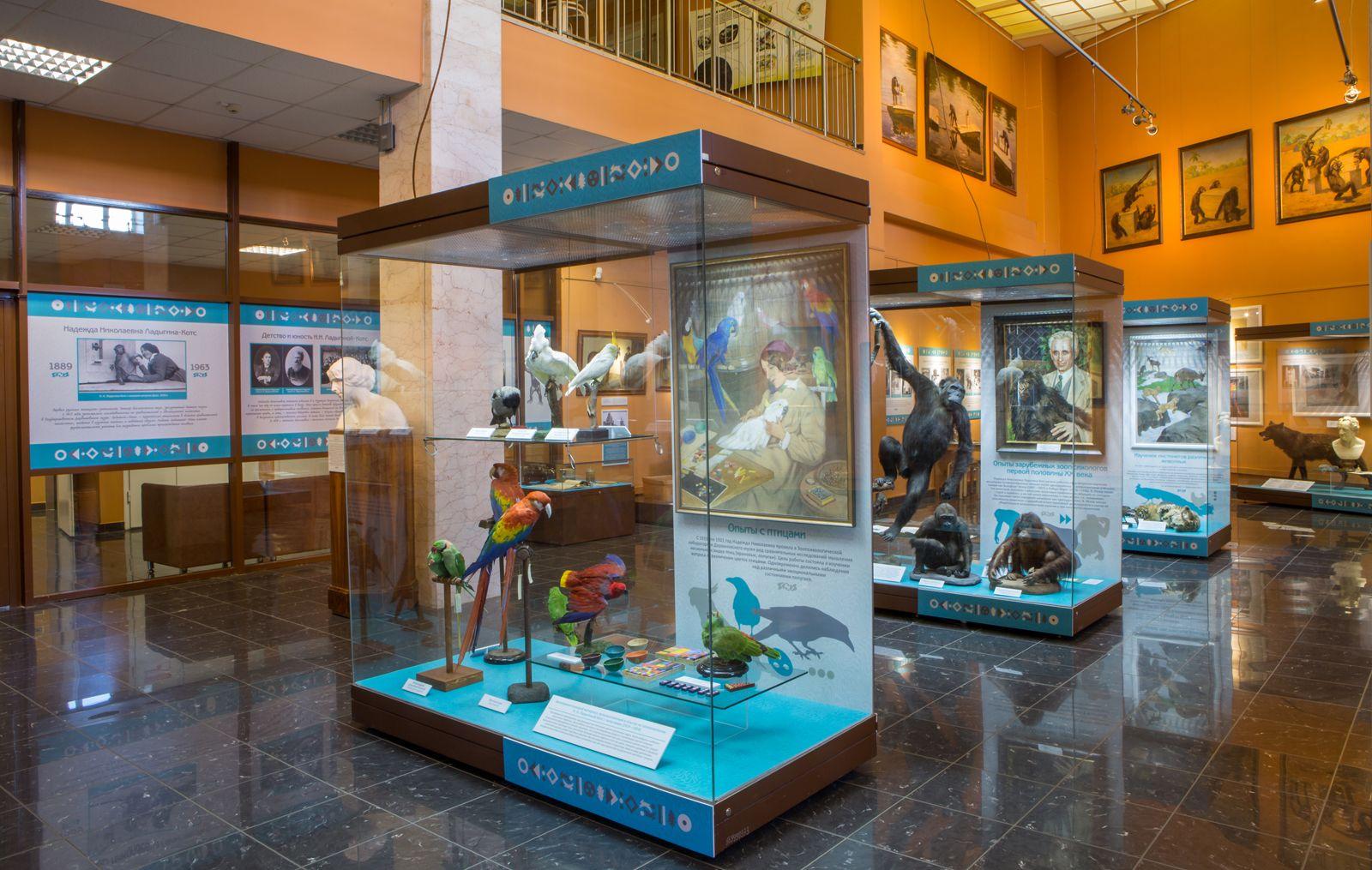 Первую русскую женщину-зоопсихолога вспомнят в Дарвиновском музее