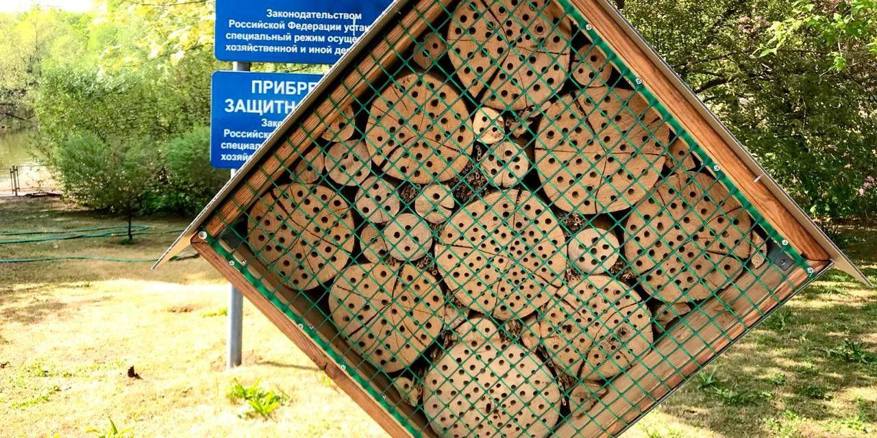 Московский зоопарк установил пчелиное убежище