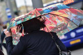 Москвичам пообещали ветер до 17 метров в секунду. Фото: Пелагия Замятина, «Вечерняя Москва»