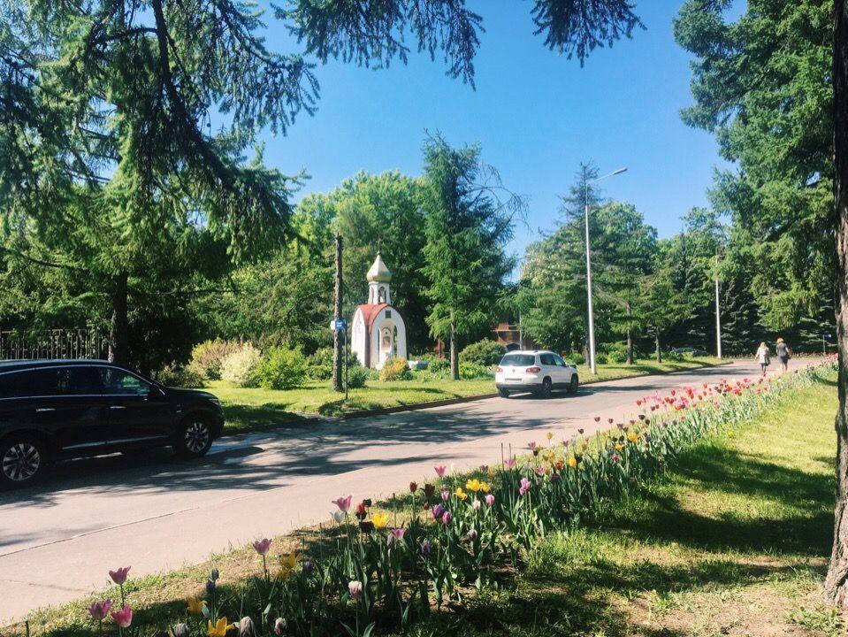 Территория больницы, наши дни. Часовня в память о Николае Алексееве. Фото: Анастасия Кирсанова