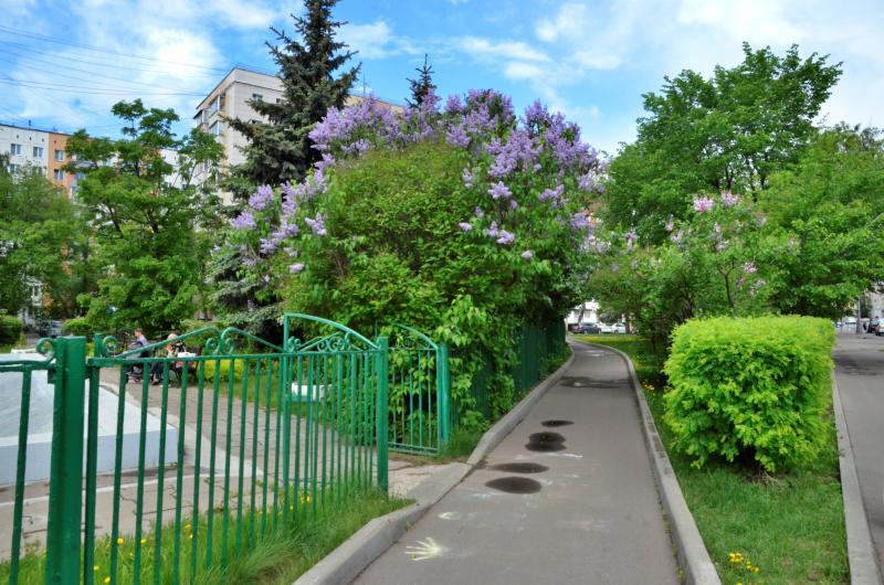 Благоустройство по трем адресам в Нагатине-Садовниках завершили с начала мая