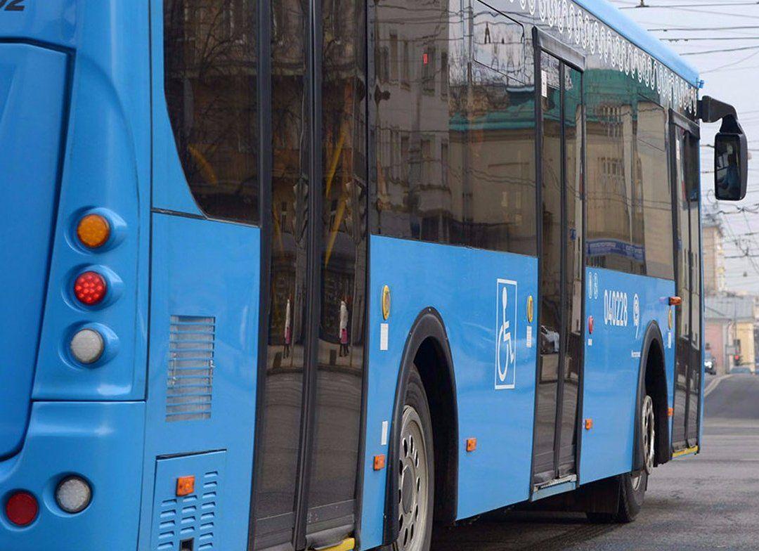 Три бесплатных маршрута автобусов организуют на юге