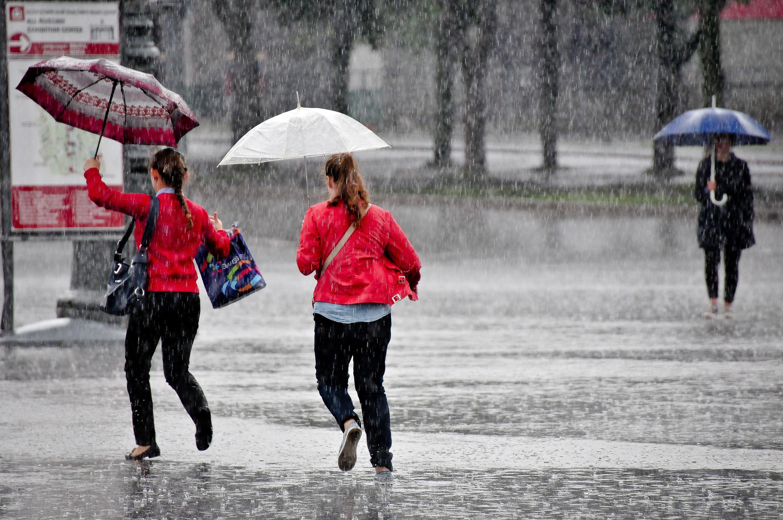 Июнь в Москве закончится на «дождливой» ноте