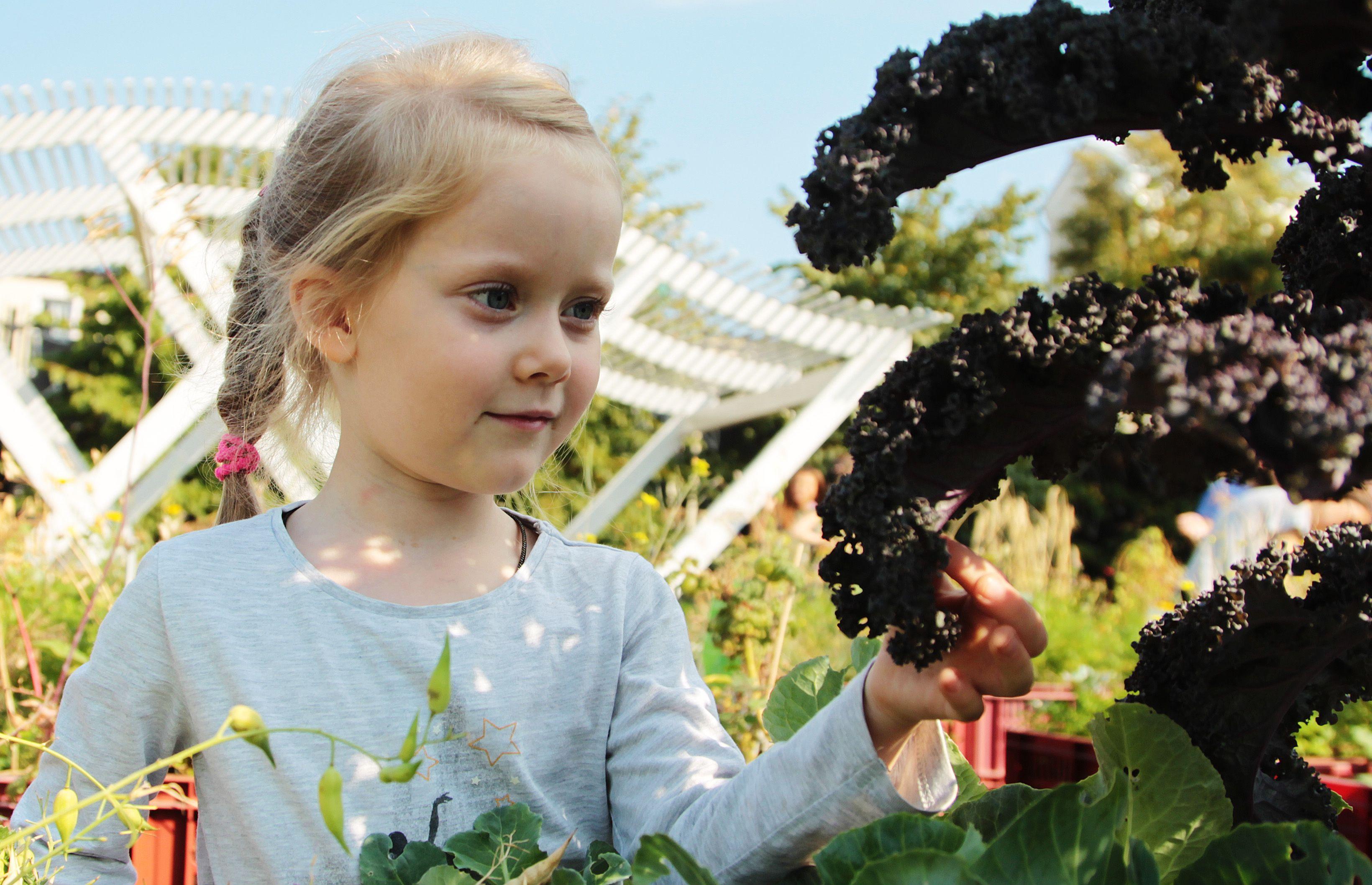 Информация ПФР: новые меры поддержки семей с детьми до трех лет и от трех до шестнадцати
