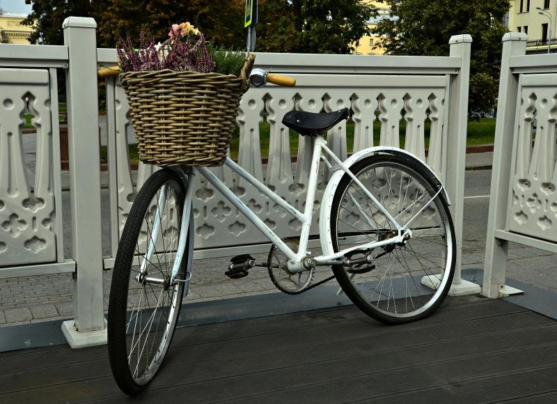 Велопрокат в Братееве стал одним из самых популярных в столице. Фото: Анна Быкова