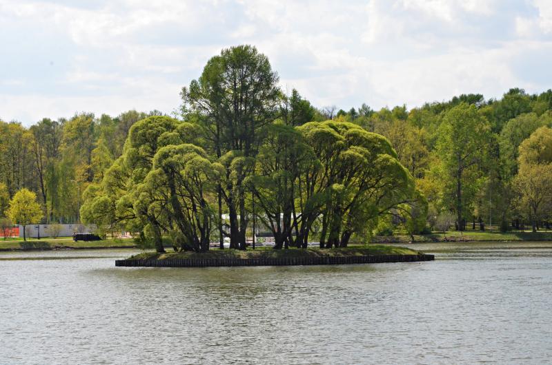 Мини-курорт открыли на территории «Царицыно»