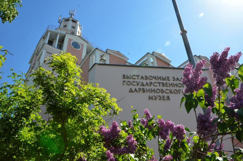 Лето на крыше: какие мероприятия подготовили для гостей Дарвиновского музея